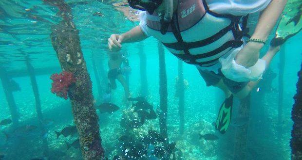 Snorkeling di Kampung Sauwandarek